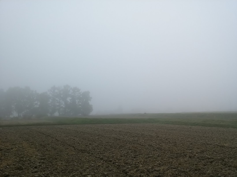 霧の日10/22/2015