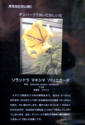 20100115_597496 400.jpg
