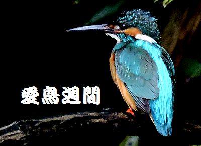 20160511_1578130.jpg