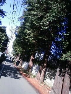 080207_1347~01.JPG