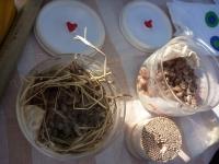 手作り納豆2種。