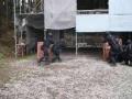 サバゲ インドア ウルバヌス