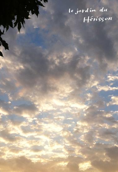blog.0911sora.jpg