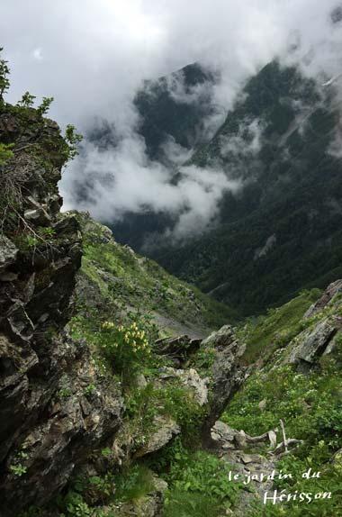 北岳 岩場2.jpg