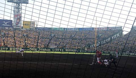 甲子園球場ネット裏野球観戦