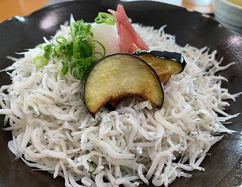 高知県安芸市しらす丼