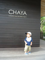 CHAYAとスタバのコラボカフェ