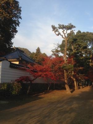 仏通寺1.JPG