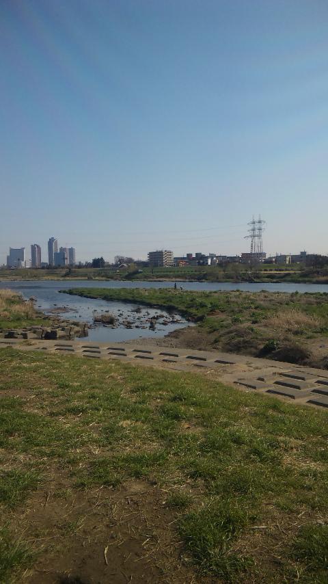 多摩川の河川敷
