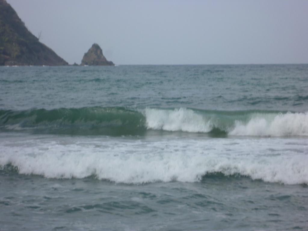 GO〜SURF!