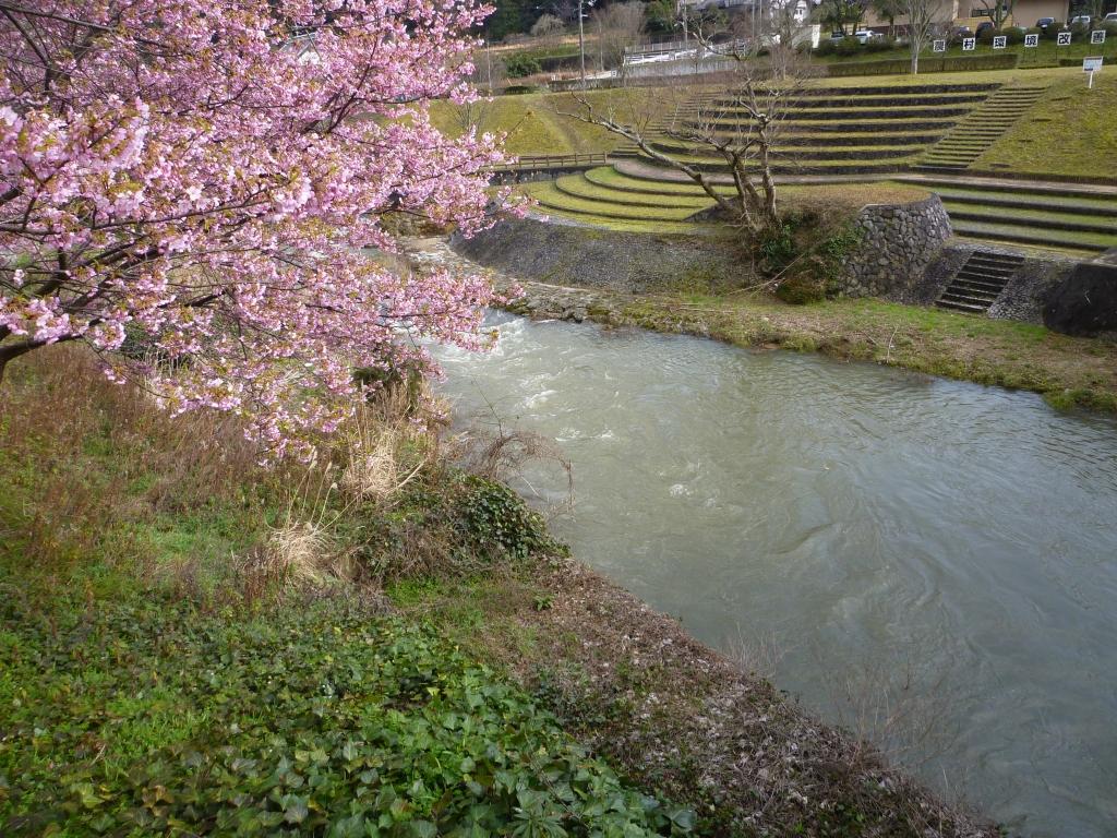 山、川、桜