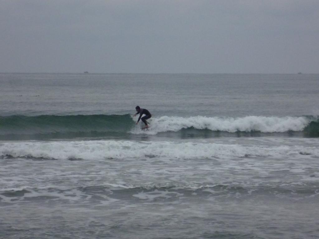 タルイ早い波