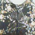 バラ柄編み上げキャミソール�