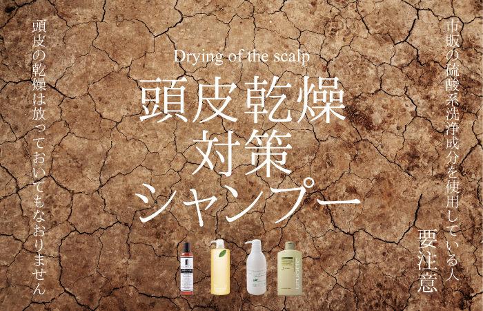 頭皮の乾燥対策シャンプーおすすめ特集