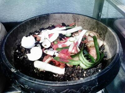 植木鉢コンポストに生ゴミを投入したところ