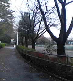 200411181544.jpg