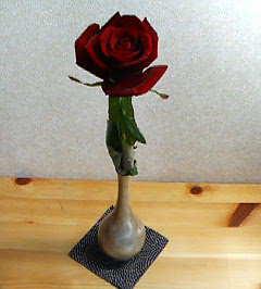 20070228_328598.jpg