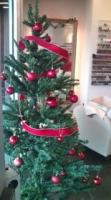 クリスマスツリーin所沢