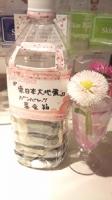 東日本大地震頑張れ募金