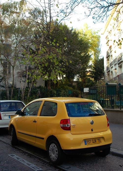 VW Fox2