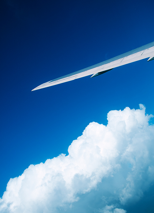 『風立ちぬ』を観て。空と翼の写真。