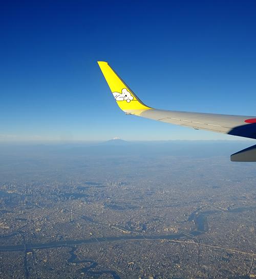 眼下に広がる大東京と富士山。
