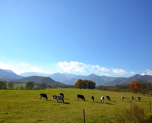 十勝清水町の牧草地と日高山脈