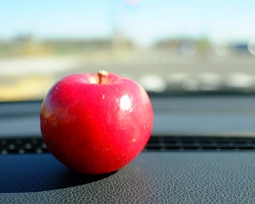 """芽室""""愛菜屋""""で買ったリンゴ"""