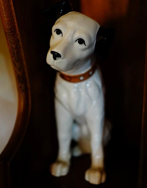 『ビラパワ』階段途中のビクター犬