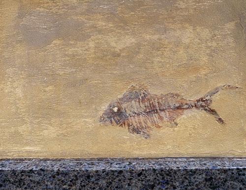 モンパルナスの魚屋の壁