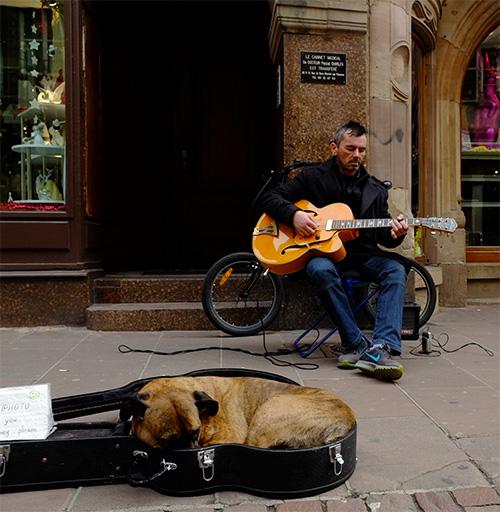 ストラスブール大聖堂の前のギター弾きと犬