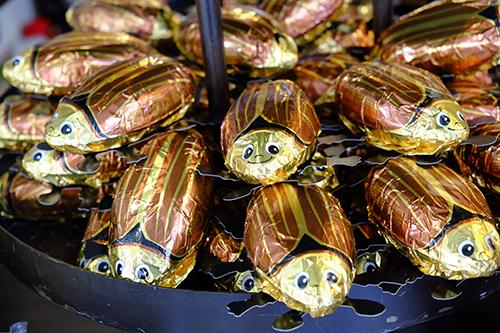 シュトゥットガルト/ゴキブリチョコレート