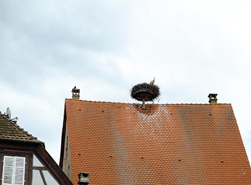リヴォビレ/メインストリート/コウノトリの巣1
