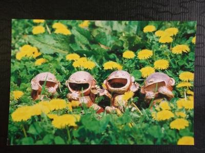 お花畑でパチリ