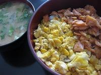 鮭と玉子の二色丼