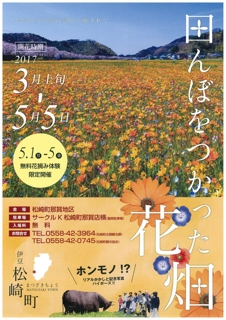 松崎町田んぼを使った花畑