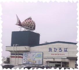 魚ひろば1.jpg