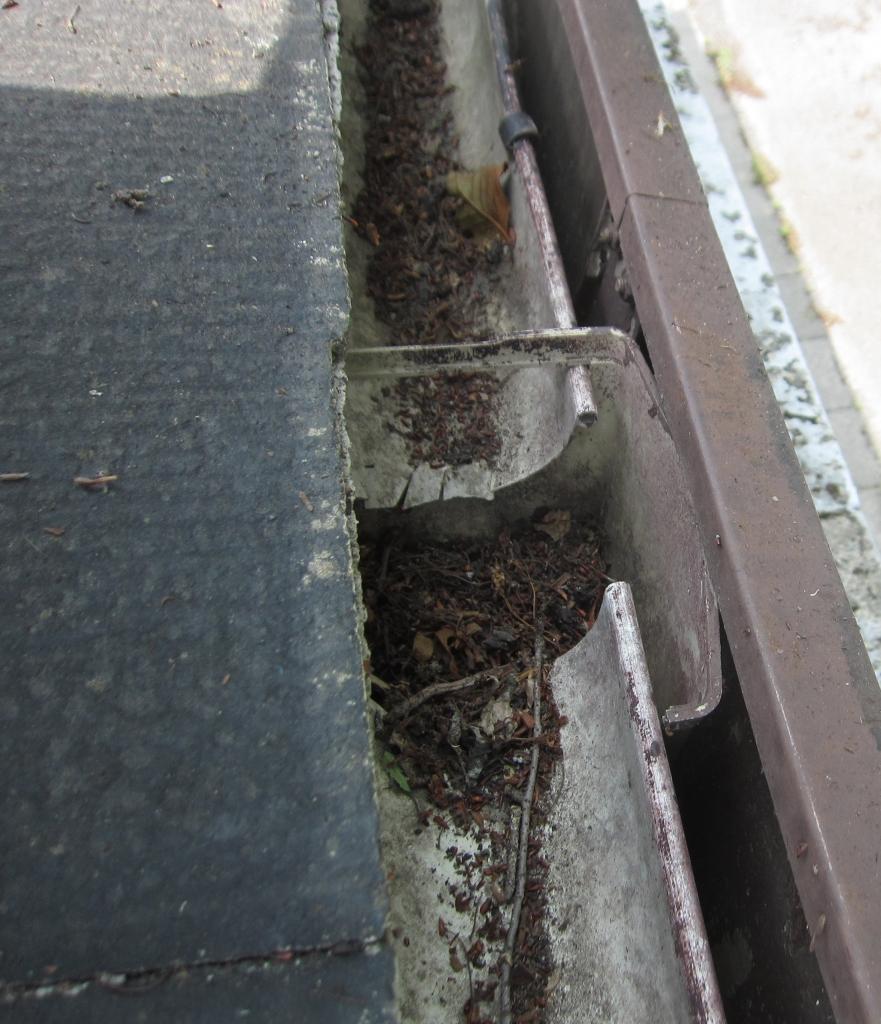 屋根雨樋清掃1.jpg