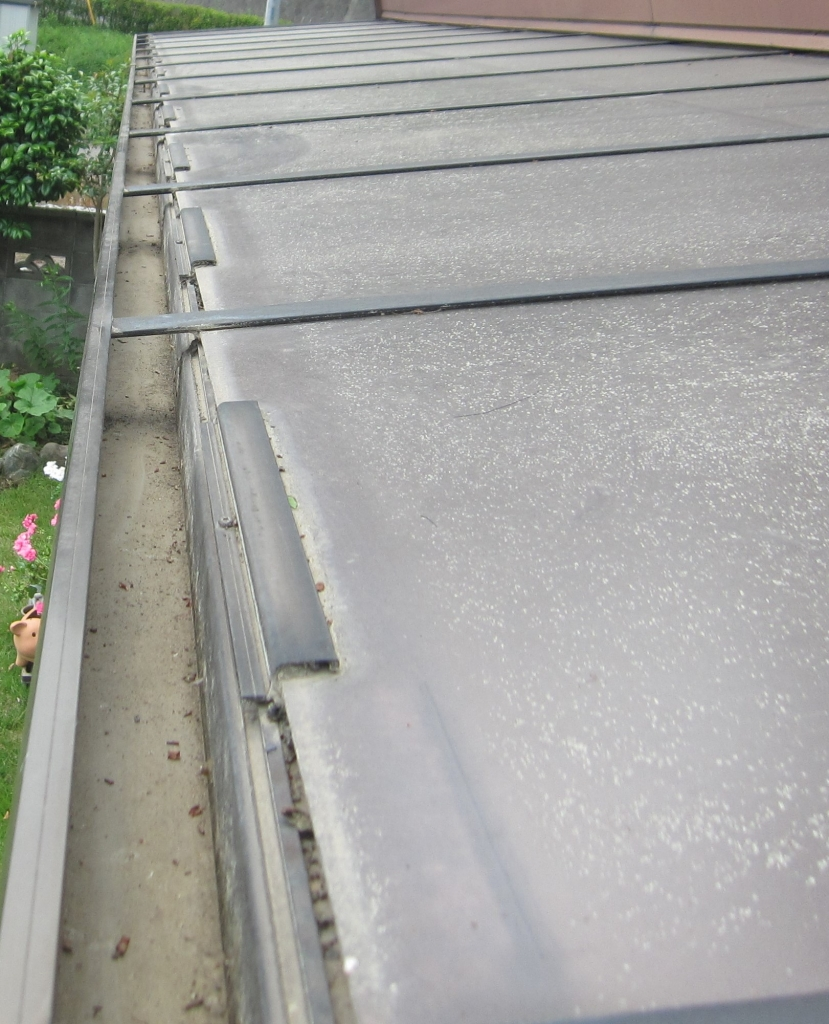 屋根雨樋清掃3.jpg