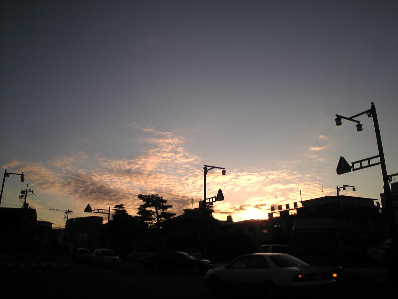 Image1191.jpg