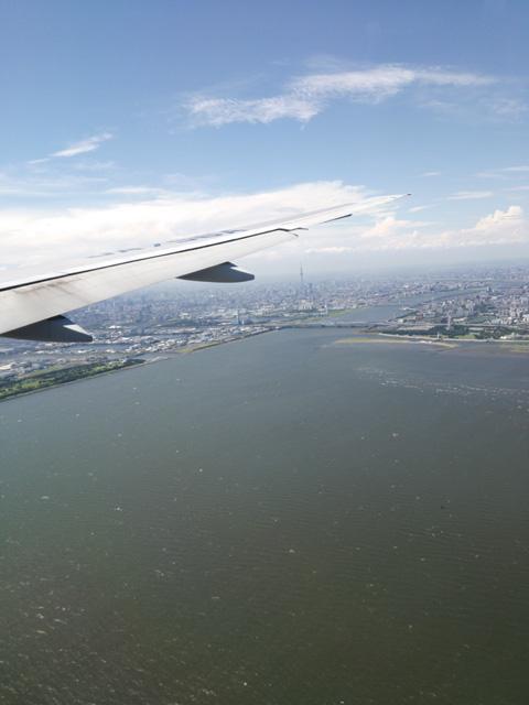 東京湾から眺めるスカイツリー