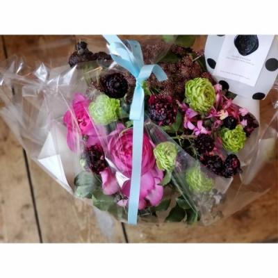 chocolatecosmos_1_20200401_134548_0_copy_500x500.jpg