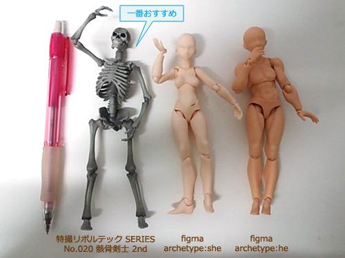 リボルテック骸骨剣士 と figma archetype:she&he (アーキタイプ:シー&ヒー)