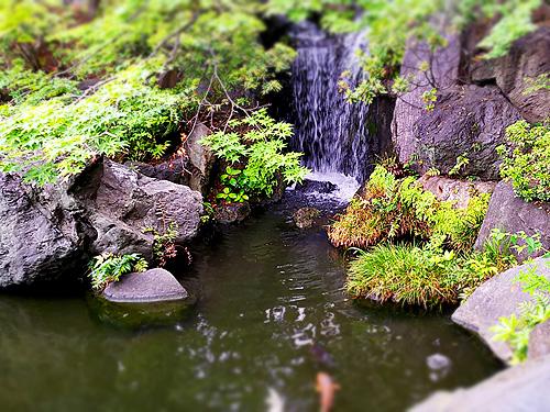 奥の池と滝