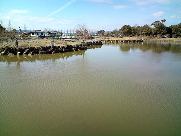 干拓の里の池
