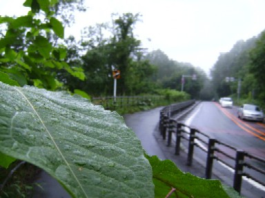 雨が・・・
