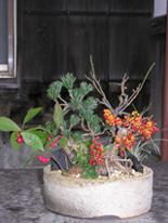 お正月の座敷の花