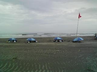 砂浴2.JPG