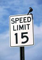 スピード標識