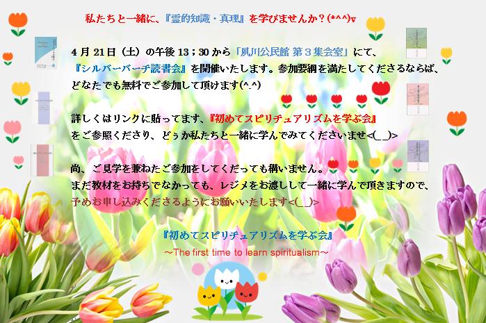 4月の募集 チューリップ編